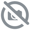 Kaspersky Internet Security 2017 5-Devices 1 an Renouvellement